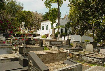 Coroa de Flores Cemitério dos Ingleses | Coroas 24 Horas Rio de Janeiro