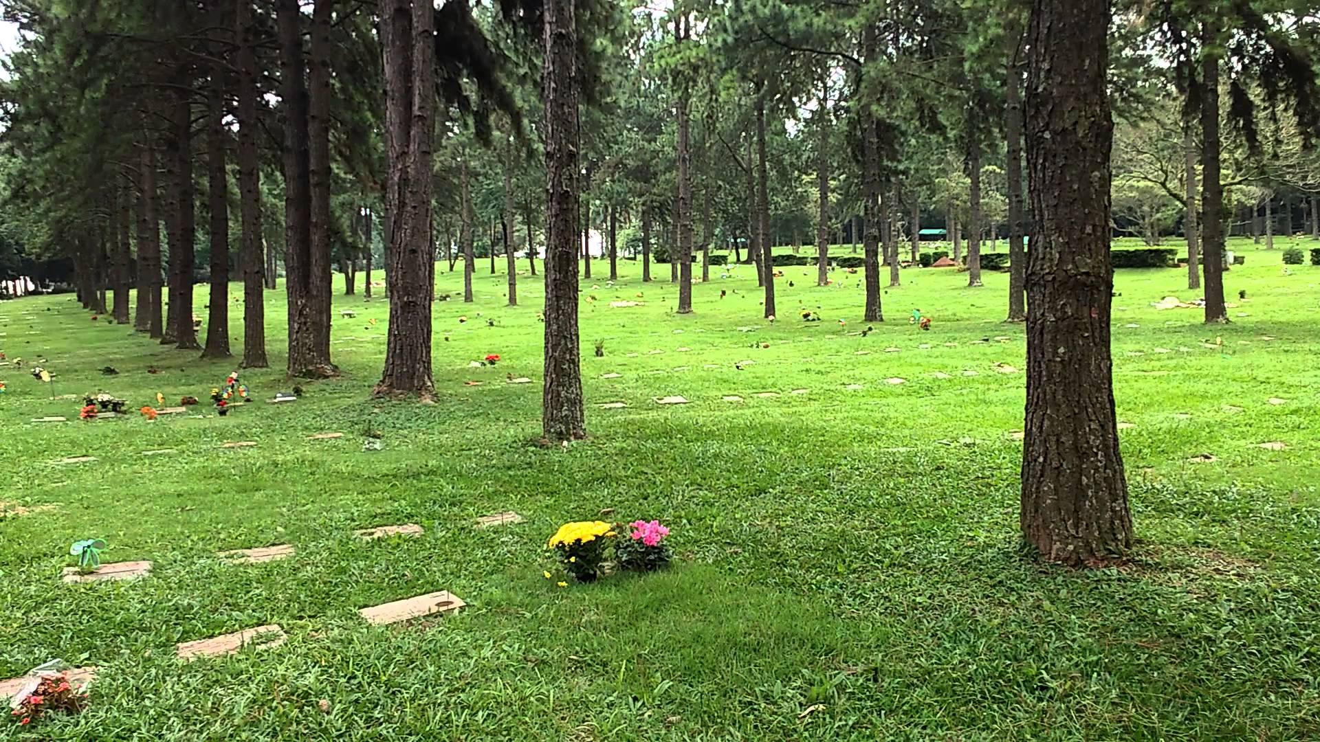 Cemitério Jardim da Colina   Coroas 24 Horas Curitiba