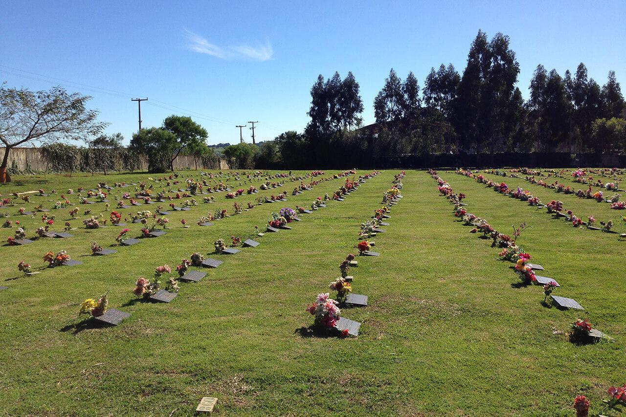 Cemitério Parque Metropolitano   Coroas 24 Horas Curitiba