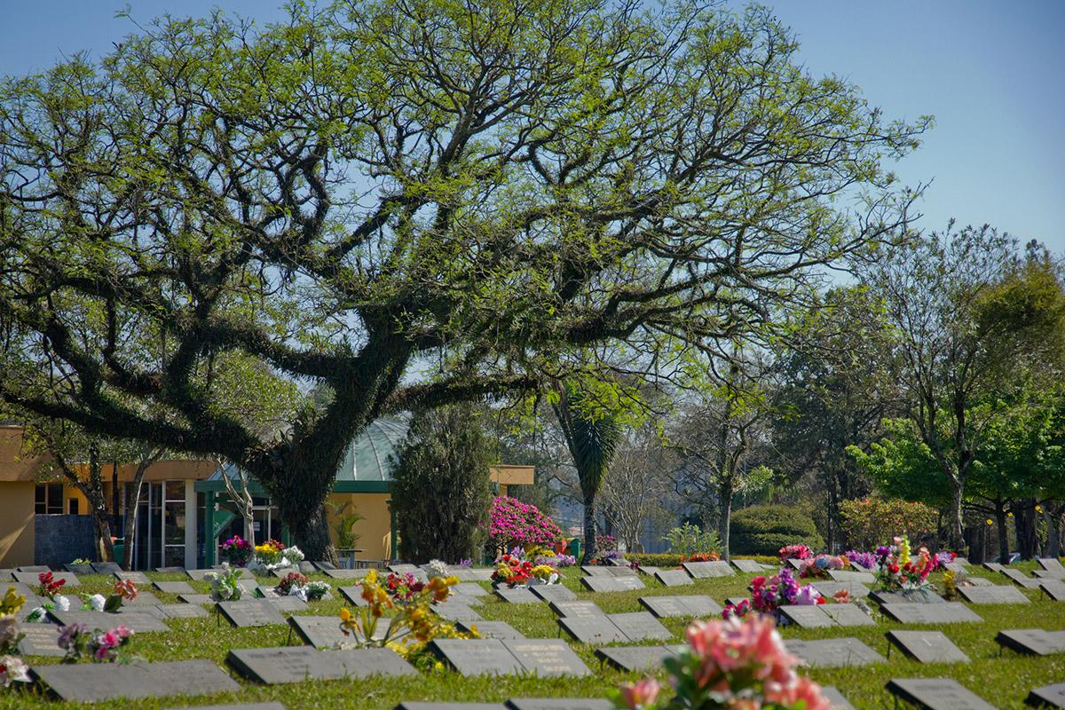 Cemitério Jardim da Saudade II | Coroas 24 Horas Curitiba