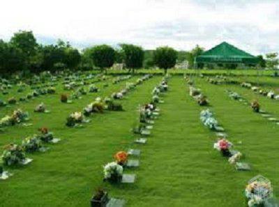Coroa de Flores Cemitério Campo da Esperança   Coroas 24 Horas Brasilia